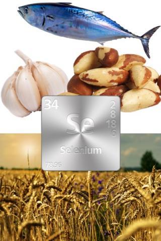 selenium 401