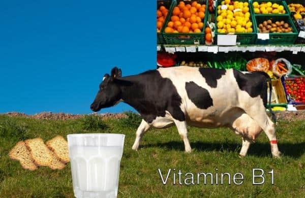 vitamineB2